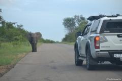 Kruger00301