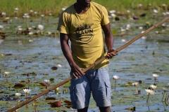 Okavango00315