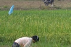 Oameni din Cambodia00132
