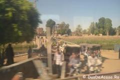 Tren-Egipt34