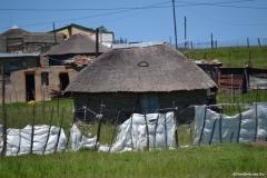 AfricaS00590