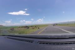 Drakensberg00002