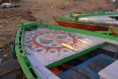 India01644