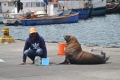 Cape-Town00123