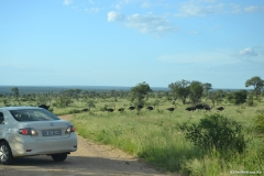 AfricaS00413