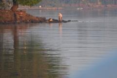 Lacul-Tana00008