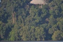 Lacul-Tana00040