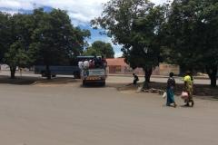 Livingstone00051