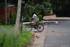 LivingstoneN00033