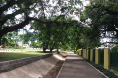 Livingstone00036