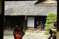 Japonia159