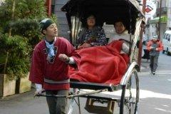 Altă ricșă