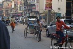 India01960