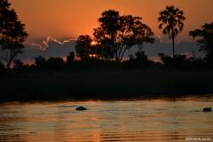 Okavango00029