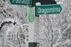 Dragomirna00155