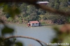 Lacul-Tana00234