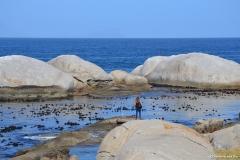 Cape-Town00284