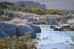 Cape-Town00333
