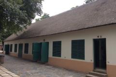 Africa00056