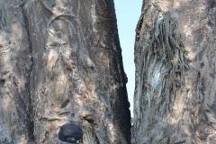 Okavango00377