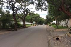 Zambia00067