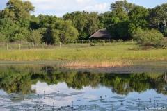 Okavango00195