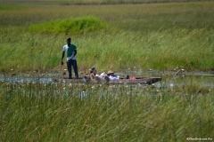 Okavango00423