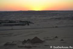 wadi12