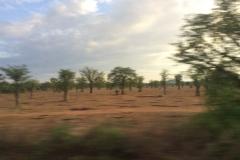 Tanzania200007