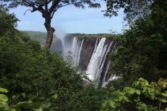Zambia00133