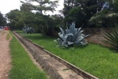 Zambia00049
