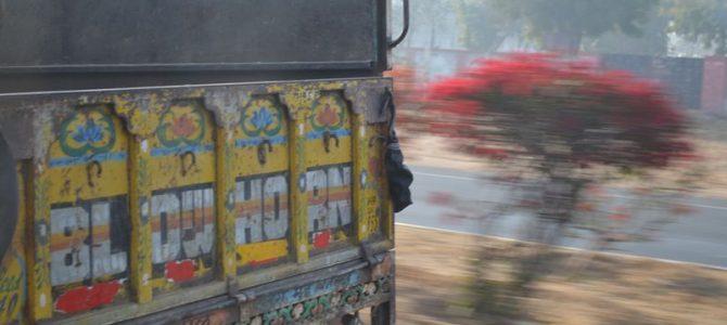 India la cald sau 'Ce biliboașca mea?' (1)