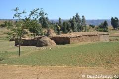 abunayemata44