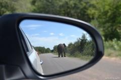 Kruger00703
