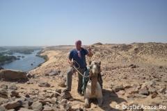 Aswan14