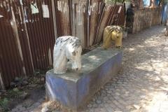 Gondar00383