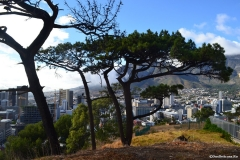 Cape-Town00004