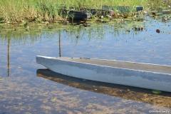 Okavango00288