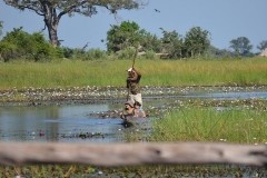 Okavango00300