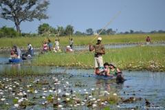 Okavango00307