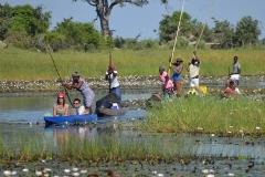 Okavango00308