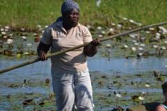 Okavango00341