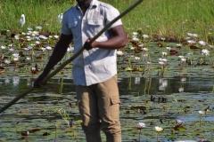 Okavango00350