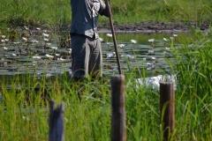 Okavango00353