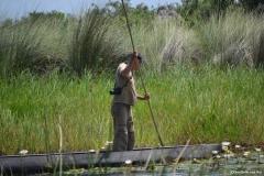 Okavango00444