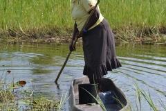 Okavango00470