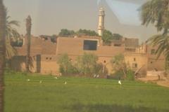 Tren-Egipt31