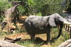 BotswanaI00138