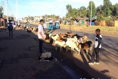 ethiopia00023