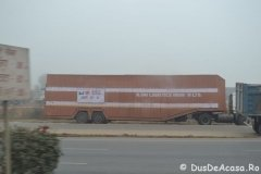 India00172